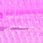 """Der pinke """"Screen of Horror"""" bei Inkompatibilität mit dem Video-Tool. Screenshot von QuickTime, Sabine Melnicki"""